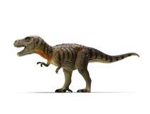 Tyrannosaurus-rex (camino de recortes) Foto de archivo libre de regalías