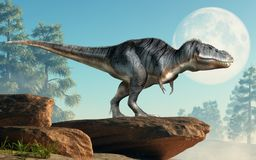 Tyrannosaurus Rex on a Cliff. A tyrannosaurus rex stands on a cliff infront of the full moon. The most popular dinosaur, this predator lived during the vector illustration
