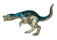 Tyrannosaurus Rex. 3D digital render of a dinosaur Tyrannosaurus Rex   on white background Royalty Free Stock Photography