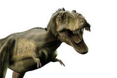 Tyrannosaurus rex. 3d illustration of a Tyrannosaurus rex  on white background Stock Photo