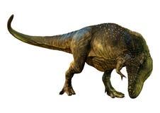 Tyrannosaurus Rex der Wiedergabe-3D auf Weiß stockfoto