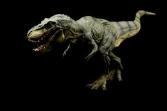 Tyrannosaurus rex. Dinosaur on dark background Royalty Free Stock Images