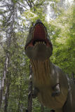 Tyrannosaurus Rex. Natural size dinosaur at Dino Parc Rasnov, view from underneath Stock Images