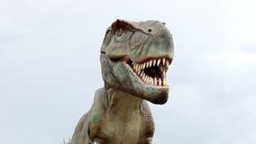 Tyrannosaurus rex stock video