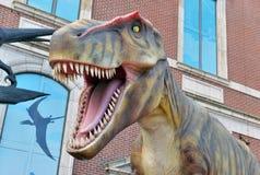 Tyrannosaurus Rex dinosaura szalkowy model Obrazy Stock