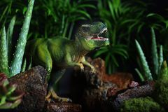 Tyrannosaurus Rex emerging from Dark Forest. A model Tyrannosaurus Rex dinosaur emerging from a  dark and tropical forest Royalty Free Stock Images