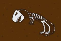 Tyrannosaurus rex fossil. Dinosaurus skeleton bones. Hand drawn  stock illustration Stock Photos