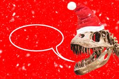 Tyrannosaurus Rex head with Christmas hat and snow flakes. blank thought ballon on red background. royalty free stock photography