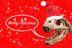 Tyrannosaurus Rex head with Christmas hat and snow flakes. thought ballon with merry christmas text on red background. royalty free stock images