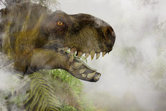 Tyrannosaurus Rex in the Jungle Royalty Free Stock Image