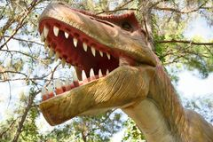 Tyrannosaurus rex-Late Cretaceous /150-65 million years ago. In Stock Images