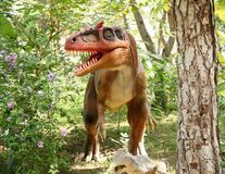 Tyrannosaurus rex-Late Cretaceous /150-65 million years ago. In Stock Photo