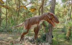 Tyrannosaurus rex-Late Cretaceous /150-65 million years ago. In Stock Image