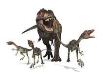 Tyrannosaurus Rex na caça ilustração royalty free