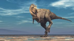 Tyrannosaurus rex op witte achtergrond Stock Fotografie