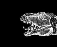 Tyrannosaurus Rex with open mouth. Dinosaur drawn with white chalk on black paper. Hand-drawn. Close up. Isolated on black stock illustration