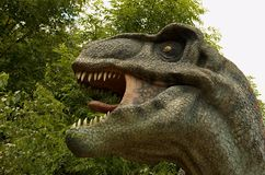 Tyrannosaurus Rex. Sculpture in live size Royalty Free Stock Photography