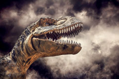 Tyrannosaurus rex in the storm. Royalty Free Stock Photo