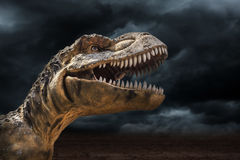 Tyrannosaurus rex in the storm. Primitive animals Stock Images