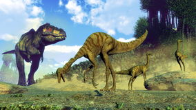 Tyrannosaurus rex surprising gallimimus dinosaurs. Herd by day - 3D render Royalty Free Stock Photos