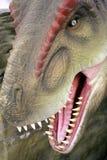 Tyrannosaurus Rex T-Rex Obrazy Stock