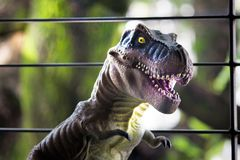 A tyrannosaurus rex. Tyrannosaurs as adults reached 6.5 meters in height and were up to 15 meters in length from the skull to the tail end, weighing more than 10 Royalty Free Stock Photo