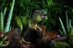 Tyrannosaurus Rex wyłania się od Ciemnego lasu Obrazy Royalty Free
