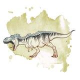 Tyrannosaurus roaring on Grunge background Royalty Free Stock Images