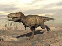 Tyrannosaurus running - 3D render Royalty Free Stock Images