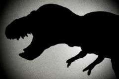 Tyrannosaurus shadow with spot light Royalty Free Stock Photos