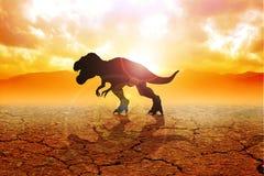 Tyrannosaurus. Silhouette of a tyrannosaurus rex on arid land Royalty Free Stock Image