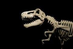Tyrannosaurus skeleton. On a black background Royalty Free Stock Photos