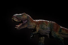 Tyrannosaurus toy on dark. Tyrannosaurus toy on a dark background Royalty Free Stock Photo
