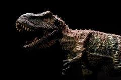 Tyrannosaurus toy on dark Stock Photos