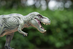 Tyrannosaurus toy Royalty Free Stock Photo