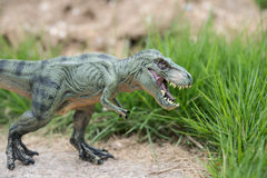 Tyrannosaurus toy. Next to grass Royalty Free Stock Image