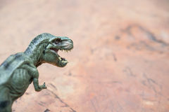 Tyrannosaurus toy on rock Royalty Free Stock Photo
