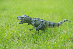 Tyrannosaurus toy Royalty Free Stock Photos