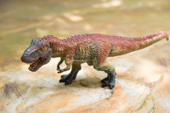 Tyrannosaurus toy. Stands on rock Royalty Free Stock Image