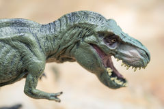 Tyrannosaurus toy stands on rock Stock Photos