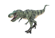Tyrannosaurus toy on white background. Tyrannosaurus toy on a white background Stock Images