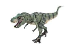 Tyrannosaurus toy on white background Stock Images