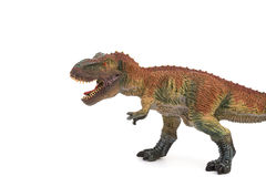 Tyrannosaurus toy on white Stock Photography