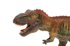 Tyrannosaurus toy on white background Stock Images