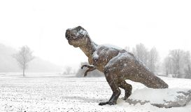 Tyrannosaurus under the snow in winter land