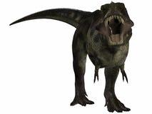 Tyrannosaurussen - 3D Dinosaurus Stock Afbeeldingen