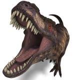 Tyrannosaurussen rex Stock Afbeelding