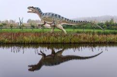 Tyranosaurus雷克斯与水反射的恐龙模型 免版税库存图片