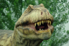 Tyranosaurus. Rex.Big mouth in live size Stock Image