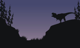 Tyranosaurus in hills scnery silhouette Stock Photos